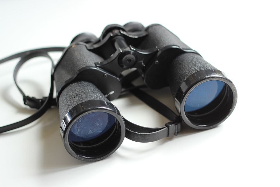 binoculars-354623_960_720.jpg