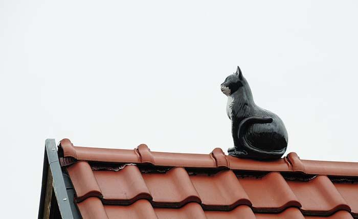 roof-858477_960_720.jpg