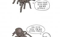 만화로 배우는 곤충의 진화8 : 외골격의 단점