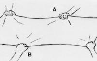 [과학]파토의 <호모 사이언티피쿠스> - 5. 중력의 임무(3)