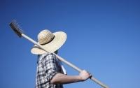귀농하는 중입니다 1 : 농촌의 현실