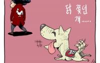 [공구의4컷]박근혜vs조선일보: 닭 쫓던 개는 짖지도 마라