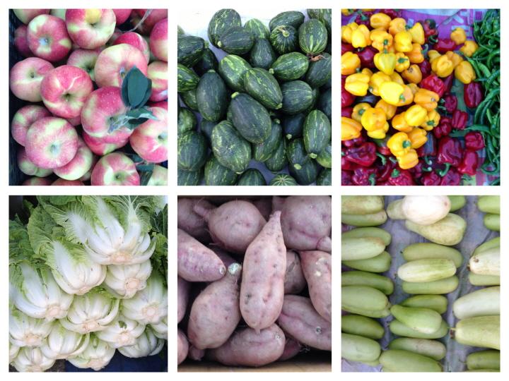 과일 야채 모음.jpg
