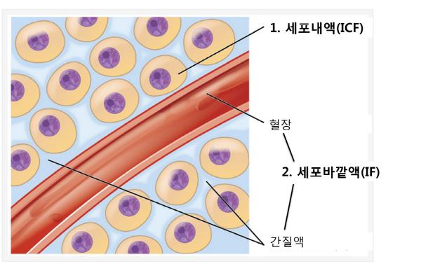 크기변환_556.png