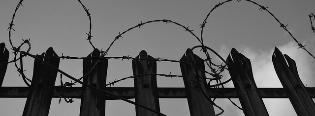 barbed-wire-539806_640.jpg