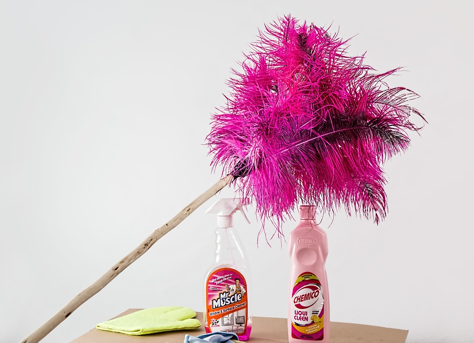 feather-duster-709124_960_720.jpg