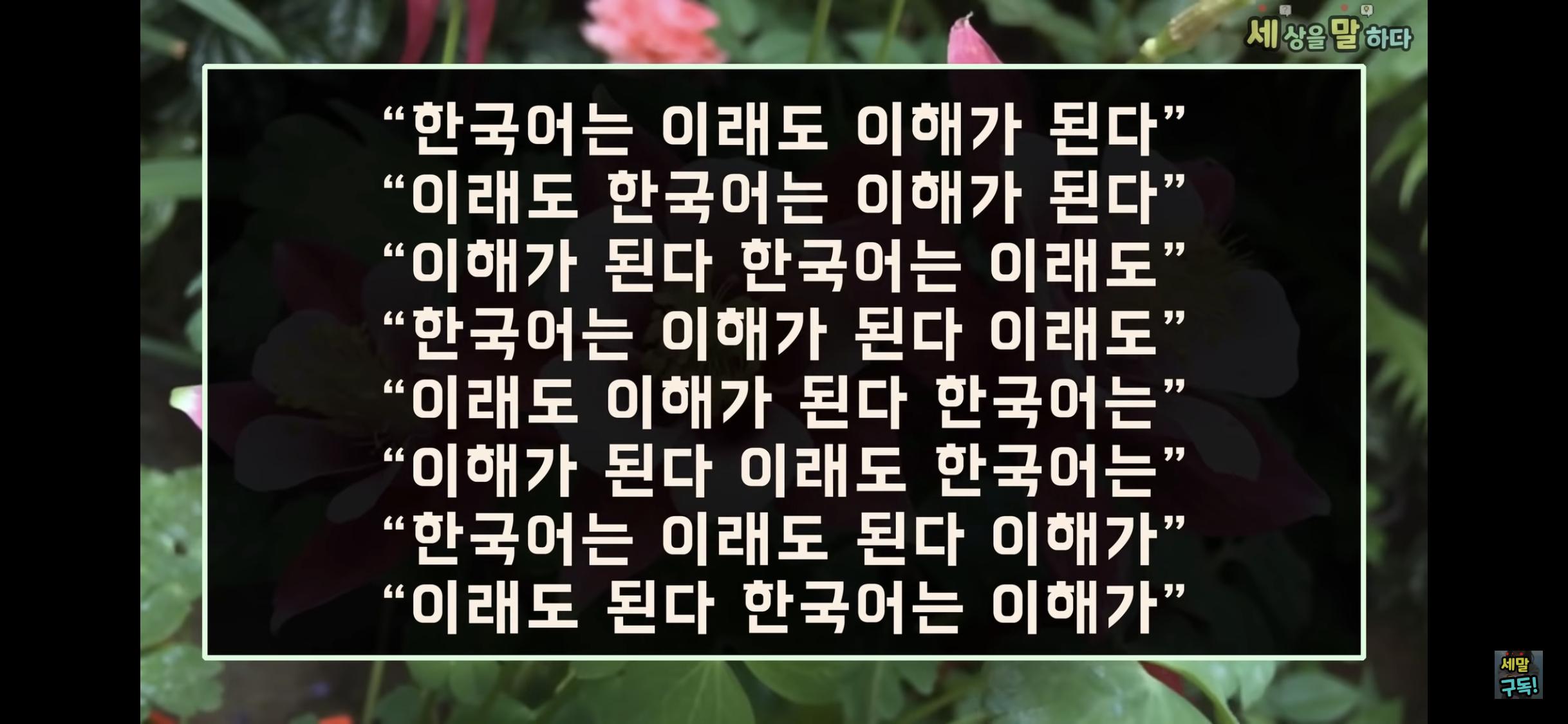 [유머] 외쿡인이 말하는 한국어 -  와이드섬