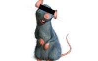 [동물]사파리매거진2580 - 쥐