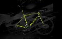 [리뷰]자전거 고르는 법 : 로드 자전거를 알아보자
