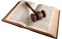 학교폭력을 대하는 아빠의 자세 7: 아빠, 법을 공부하다