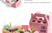 [게시판 취재]애완돌 : 돌을 돈을 받고 파는 현대판 봉이 김선달?