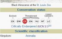 [동물]사파리매거진2580 - 검은 코뿔소편