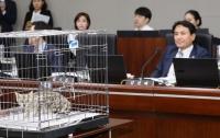 [정치]2018 국정감사 디비기, 파멸편 : 전위예술가 김진태를 응원한다