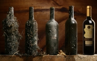 [잡식]교양으로는 쓸모있을 와인 지식 8 : 와인도 건강검진을 받는다