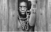 [역사]콜럼버스의 두 얼굴, 미국의 두 얼굴6 : 흑인, 노예가 되다