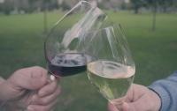 [잡식]교양으로는 쓸모있을 와인 지식 5 : 프랑스의 와인 만드는 동네, 보르도와 부르고뉴