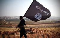 [음모]시리아(IS) 사태를 보는 다른 시각 : 예언 하나 한다