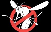 만화로 배우는 곤충의 진화19 : 모기의 역사