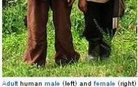 [동물]사파리매거진2580 - 인간에 대한 진실