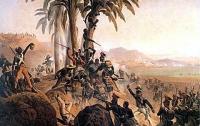 전염병이 바꾼 천조국의 역사3: 아이티 혁명과 나폴레옹